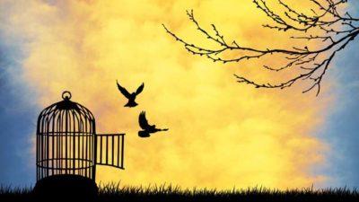 kebebasan dan sikap kita