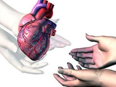 Hukum Transplantasi Organ Perspektif Qaidah Ad-Dhararu Yuzaal