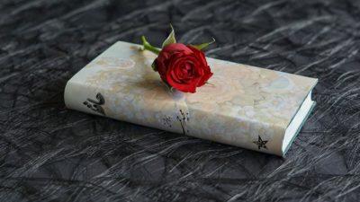 bunga bertanda kasih sayang