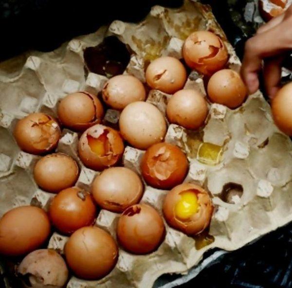 Najiskah Telur yang Sudah Membusuk?